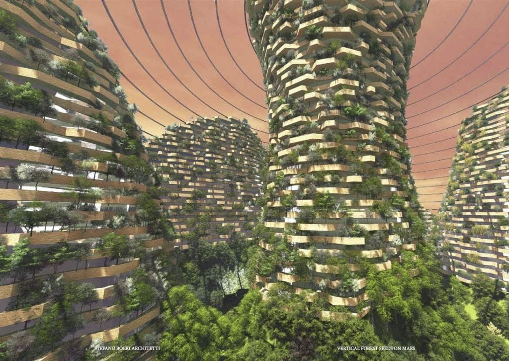 Vertical Forest Seeds on Mars